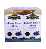 BILBERRY EXTRACT 2*60